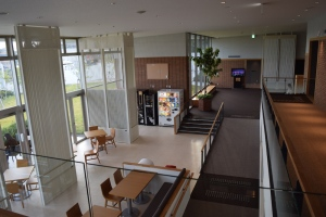 Henn-na Hotel common area